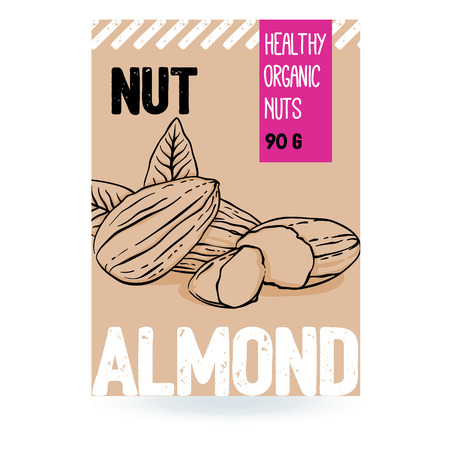 Beautiful vector hand drawn almond organic nut. Template elements for packaging design. Modern illustrations isolated on white background. Stock Illustratie