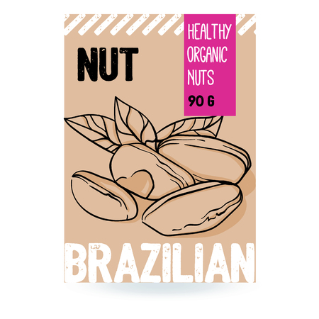 Beautiful vector hand drawn brazilian organic nut. Template elements for packaging design. Modern illustrations isolated on white background. Stock Illustratie
