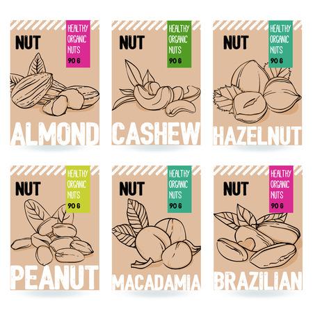 Beautiful vector hand drawn organic nut card set. Almond, cashew, hazelnut, peanut, macadamia, brazilian nut. Template elements for packaging design. Modern illustrations isolated on white background.