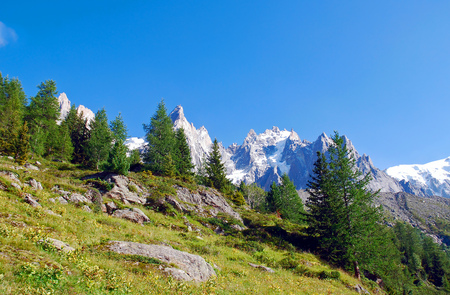 Alps mountain peaks with tree-tops in slope Stock Photo