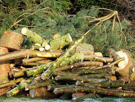 relentless: firewood