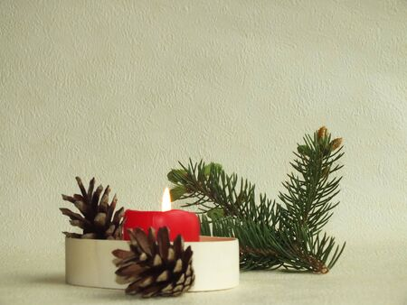 congratulations cards spice: christmas