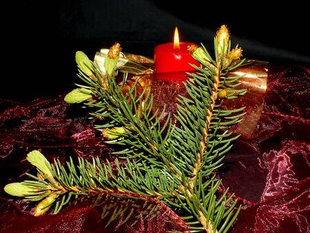 christmas scent: Navidad Foto de archivo