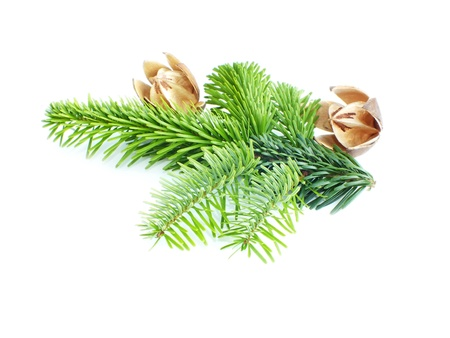 christmas decoration on white background to Stock Photo