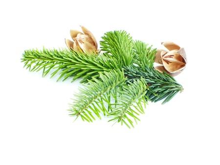 christmas decoration on white background to Standard-Bild