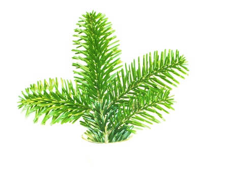 Christmas tree decorated , over white Stock Photo - 17308093