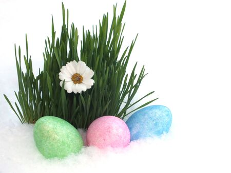 Colorful Easter eggs decorated Stock Photo - 17814394
