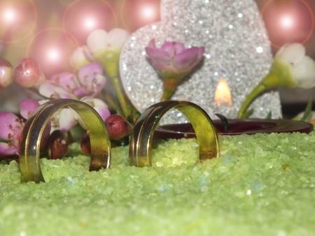 two wedding rings romantic in delicate stones Stock Photo - 18007515