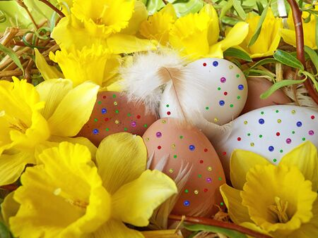 colorfully painted chicken eggs in the basket for easter photo