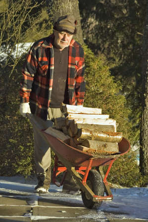 loads: senior man transporting woods on a wheel barrel for the fireplace