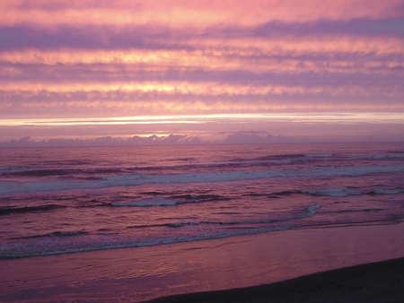 Magical violet sunset on Cape Lookout, Oregon. photo