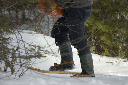 snowshoes: close up of a carrier on snowshoes