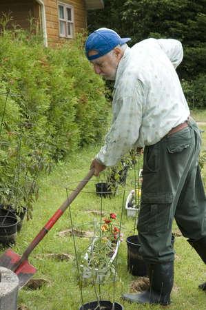 senior shovelling his garden