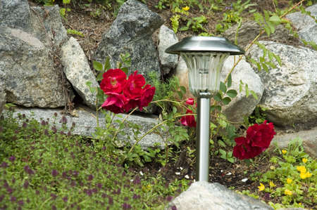 rock garden with red roses and solar lamp. A little blur in purpose gives a peaceful effect.