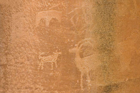 Petroglyph or rock carvings of Indians (Native Americans) on a canyon wall in Utah, USA, representing animals, figures, sheep, snakes, wilderness photo