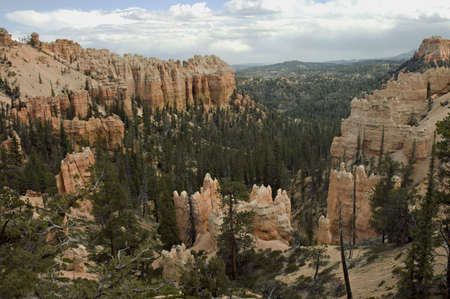 Scenic view of the pinkish  hoodoos of  Bryce Canyon National Park, Utah, USA