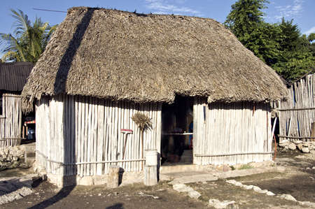 Typical Mayan house with roof made of palm trees,  Yucatan, Mexico photo