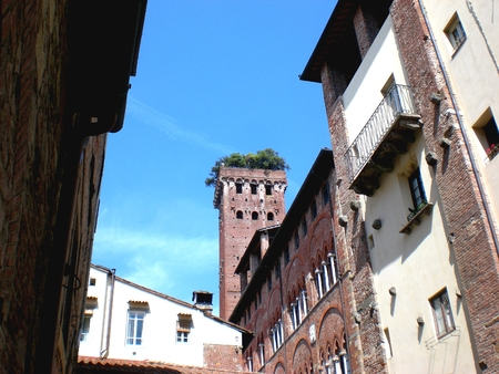 Old green tower, Lucca, Italy.