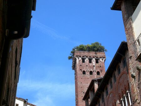 Old green tower, Lucca, Tuscany. Archivio Fotografico