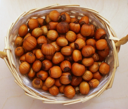 Hazelnuts basket Archivio Fotografico