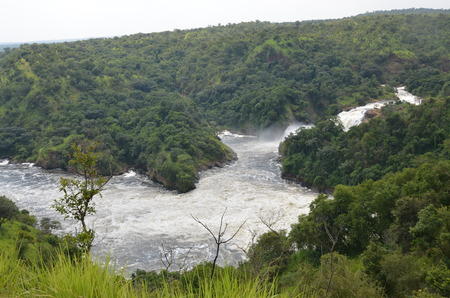 Panorama of the Nile downstream of the Murchison Falls