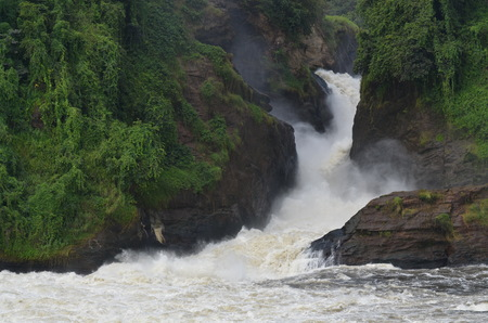 Panorama of the Nile downstream of the Murchison Falls Stock fotó - 93142730
