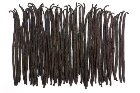 Boot of Bourbon vanilla beans isolated on white background Фото со стока