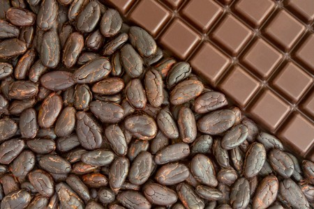 Bar of chocolate, and cocoa beans
