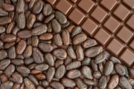 Barre de fèves de cacaoyères et chocolat Banque d'images