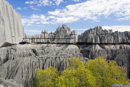 Tsingy de Bemaraha, National Park in Madagascar, Unesco World Heritage photo