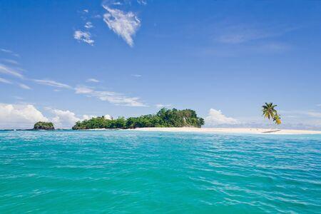 sandbank: Desert island with palm trees on the sandbank