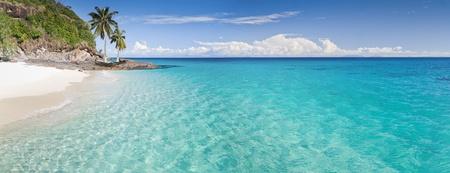 beach paradise: Desert island panorama with palm trees on the beach