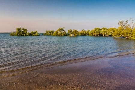 Mangrove in the Antsiranana bay (Diego Suarez) northern Madagascar photo