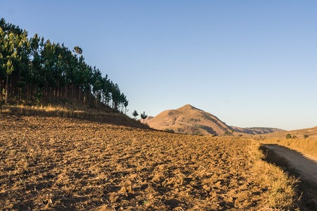 Typical landscape of Malagasy highlands near Ampefy, Madagascar photo