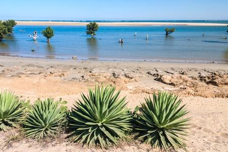Seascape d'Ifaty, ouest de Madagascar