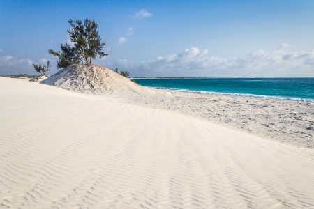 Dunes and wild beach in southern Madagascar photo
