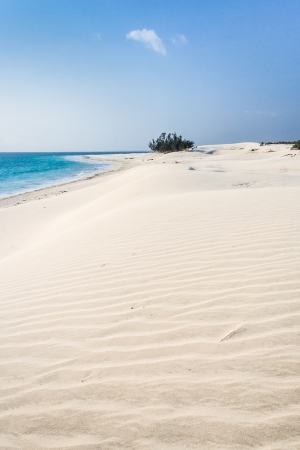 high desert: Dunes and wild beach in southern Madagascar