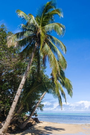 Seascape of Sainte Marie Island (Nosy Boraha), Madagascar Stock Photo - 14667510