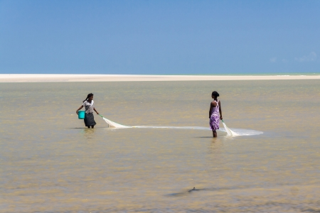 bank western: Malagasy women fishing for shrimp net on oct 29, 2007 in the lagoon of Morondava in the east of Madagascar Editorial