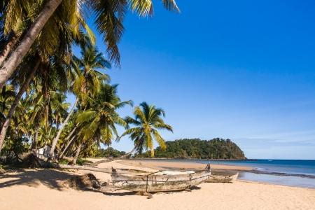 Beautiful tropical sandy beach, seascape with palm trees