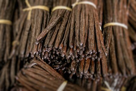 Grappes de haricots à la vanille de madagascar Banque d'images - 83421287