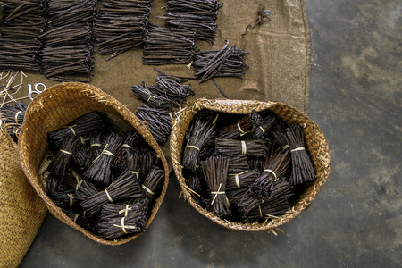 Manufacture of Bourbon vanilla in a craft workshop in east of Madagascar