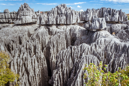 The great Tsingy de Bemaraha of Madagascar in the Tsingy de Bemaraha Integral Nature Reserve of UNESCO