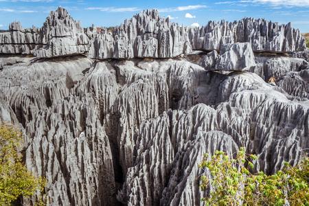 ユネスコの提供・ デ ・ Bemaraha 積分自然保護区のなかのマダガスカルの偉大な提供・ デ ・ Bemaraha 写真素材