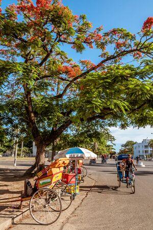 Alte caracteristici în Madagascar - planeta singuratică - Madagascar