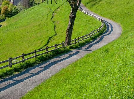 road in the middle of nature in spring Standard-Bild