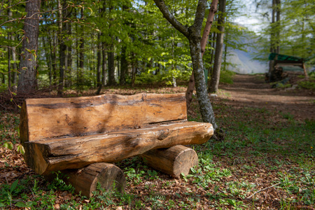 bench to rest on the path through the woods 스톡 콘텐츠