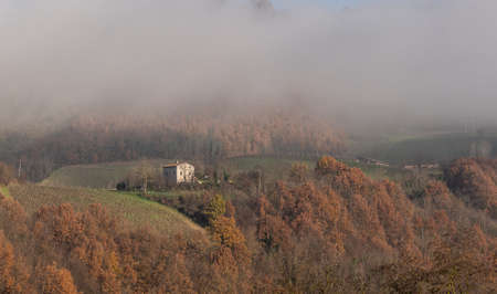 We can see here the ubiquitous fog which covers the nearby slopes of the mountains with its veil.