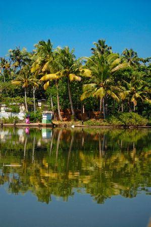 kerala backwaters: Backwaters in Kerala, India