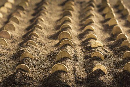 geld gekweekt op grond